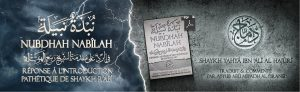telegram article nubdhah nabilah